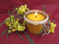 Bougie d'ambiance Authentique Miel de Mimosa